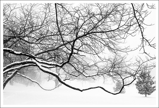 Big Snow 2014-01-05 4