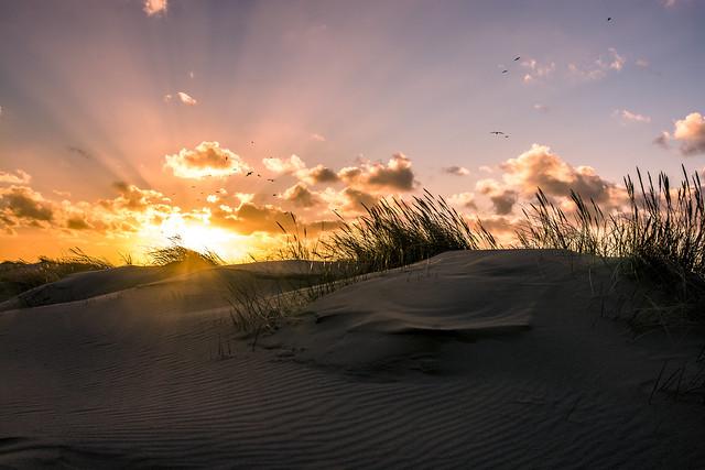 Scheveningen duinen sunset