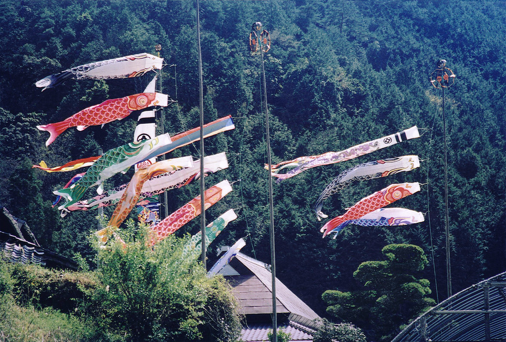Carp Flags for Boys' Day