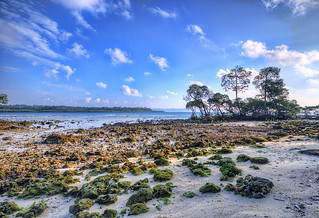 Havelock Island, Andaman & Nicobar, India.