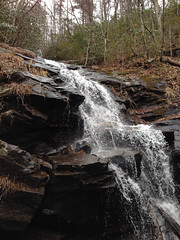 Falls on Feeder of Andrews Creek