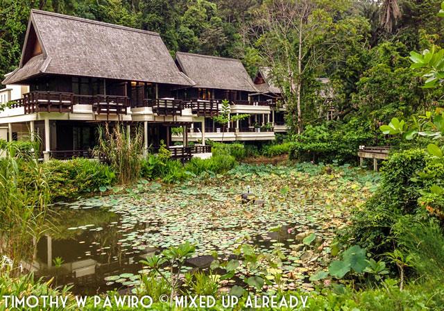 Malaysia - Kinabalu - Gaya Island Resort - Bayu villa beside the pond
