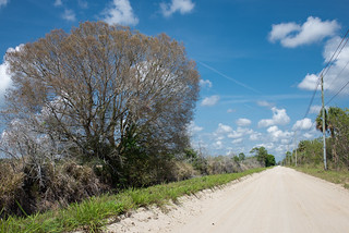 Country Road.....Florida