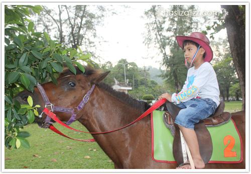 12931774975 2f5a62a0bc o Abang si Pengembala kuda