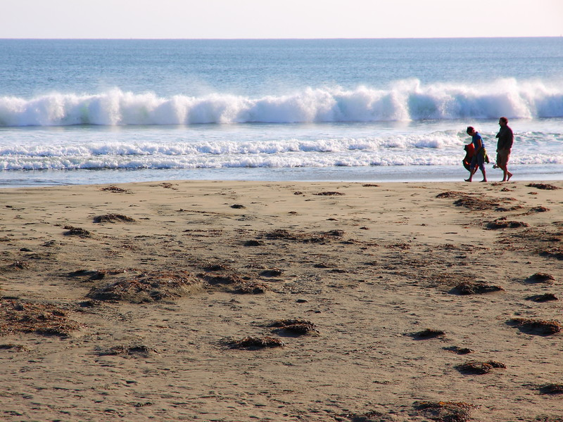 IMG_1386 Point Reyes National Seashore