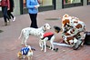 It's a Doggy Dog World! by Little Italy Photography