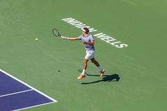individual sports, tennis, sports, rackets, tennis player, ball game, racquet sport,