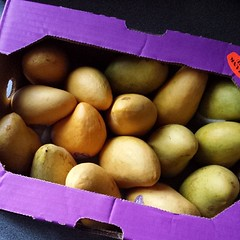 The awesomeness of 16 mangoes for $9. Woohoo to @wholefoodsont !