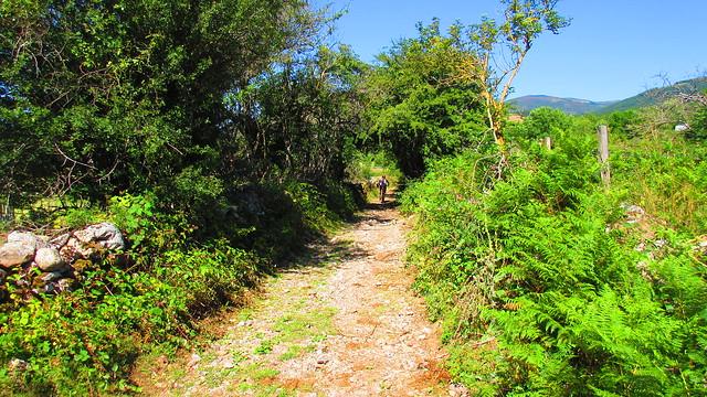 2015_08_02_Reinosa_Hermandad_Campo de Suso_031