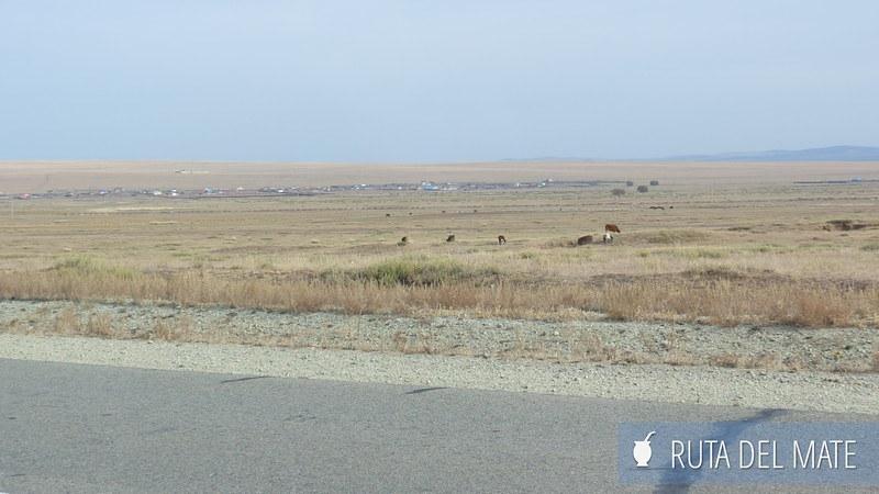 Cruce Frontera Rusia Mongolia (2)