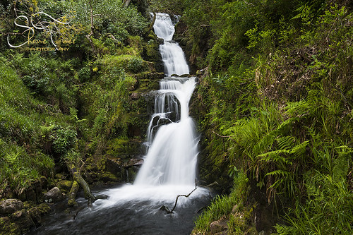 O' Sullivans Cascade Killarney  | Shane Turner Photography Tralee Co. Kerry