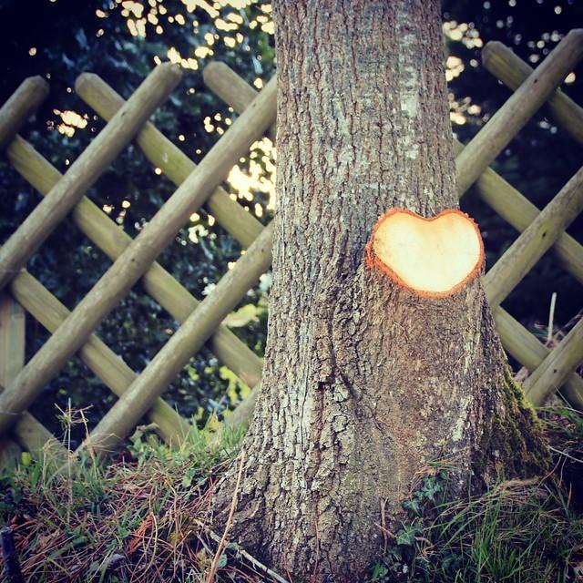 L'amour est partout !