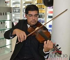 bowed string instrument, violinist, string instrument, musician, violin, viol, viola, fiddle, cello, violist, string instrument,