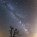 The Milky Way at Cuyamaca Rancho State Park by slworking2