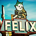 Felix the Cat, the Wonderful Wonderful Cat by Thomas Hawk