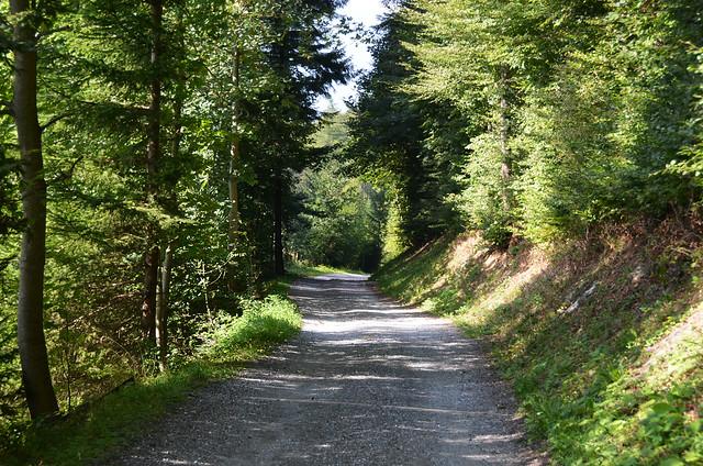 Caminos de Suiza