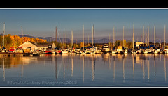 Fall at Chatfield Marina