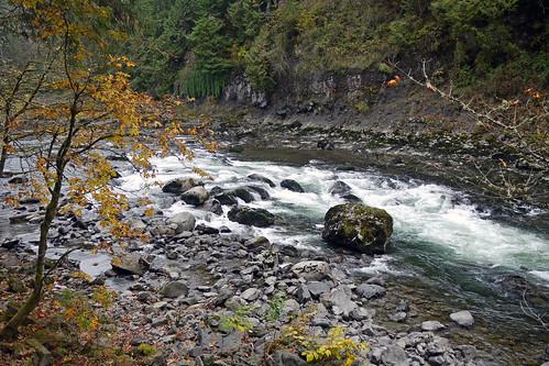 Snoqualmie Falls Trail