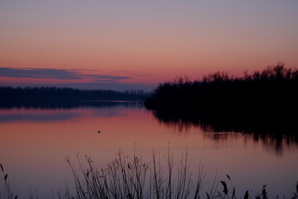 26. El río Po, cerca de su desembocadura. Autor, Enrico Pascucci
