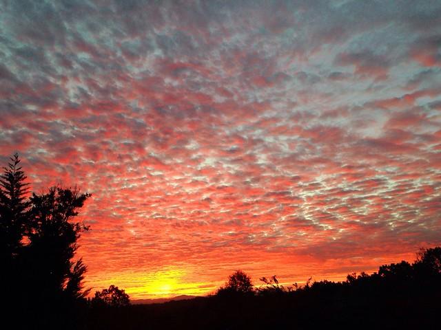 Sunrise 11.5.13