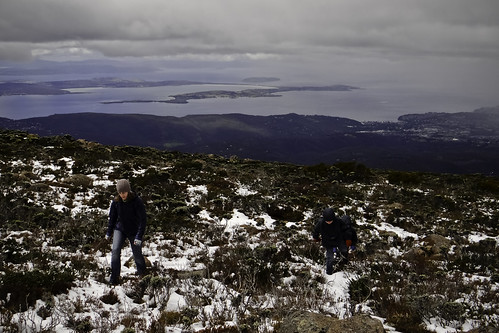 Walking the Zig-Zag Track #1, Mount Wellington
