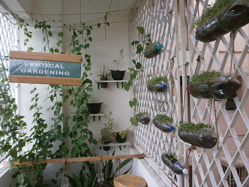 Suseum sustainability museum in chennai destination for Terrace vegetable garden india