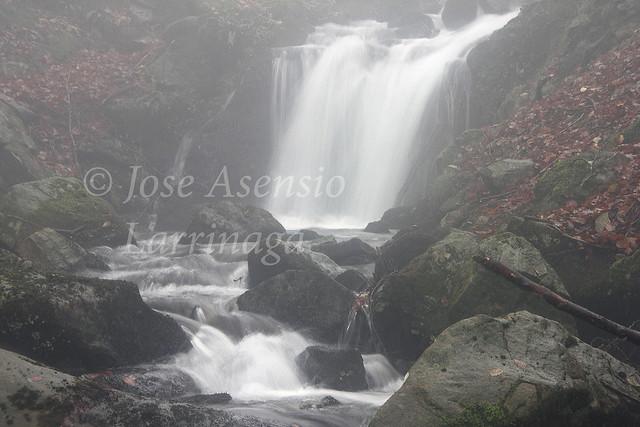Parque Natural de Gorbeia/Gorbea #DePaseoConLarri #Photography 2229
