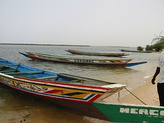 Pirogues on Senegal River, Rozina Kanchwala, SG