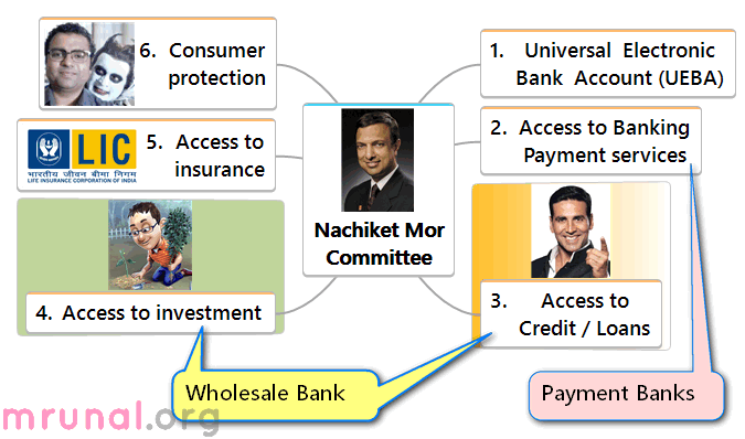 Nachiket Committee Access to investment Wholesale Bank