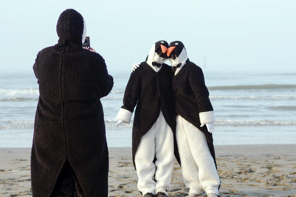 Carnaval de Dunkerque - Les pinguoins