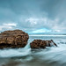 Moving Moments Seascape by Shannon Rogers Photography