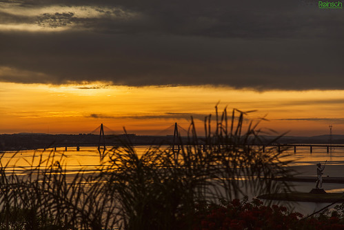 morning sky plants water yellow clouds digital sunrise canon river eos golden reflex silhouettes bridges 5d encarnacion misiones posadas markii canoneos5dmarkii 5dmkii pabloreinschphotography