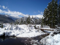 2oo7 Snowstorm (4)