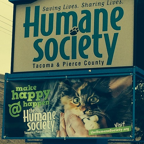 Wylla's on the @humanesocietytacoma sign! #wyllastout