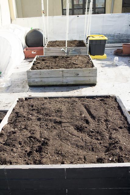 Spring Garden Cleanup March 15_15