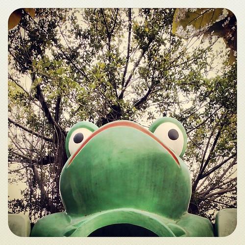 Frogger. #nantou #taiwan #playground