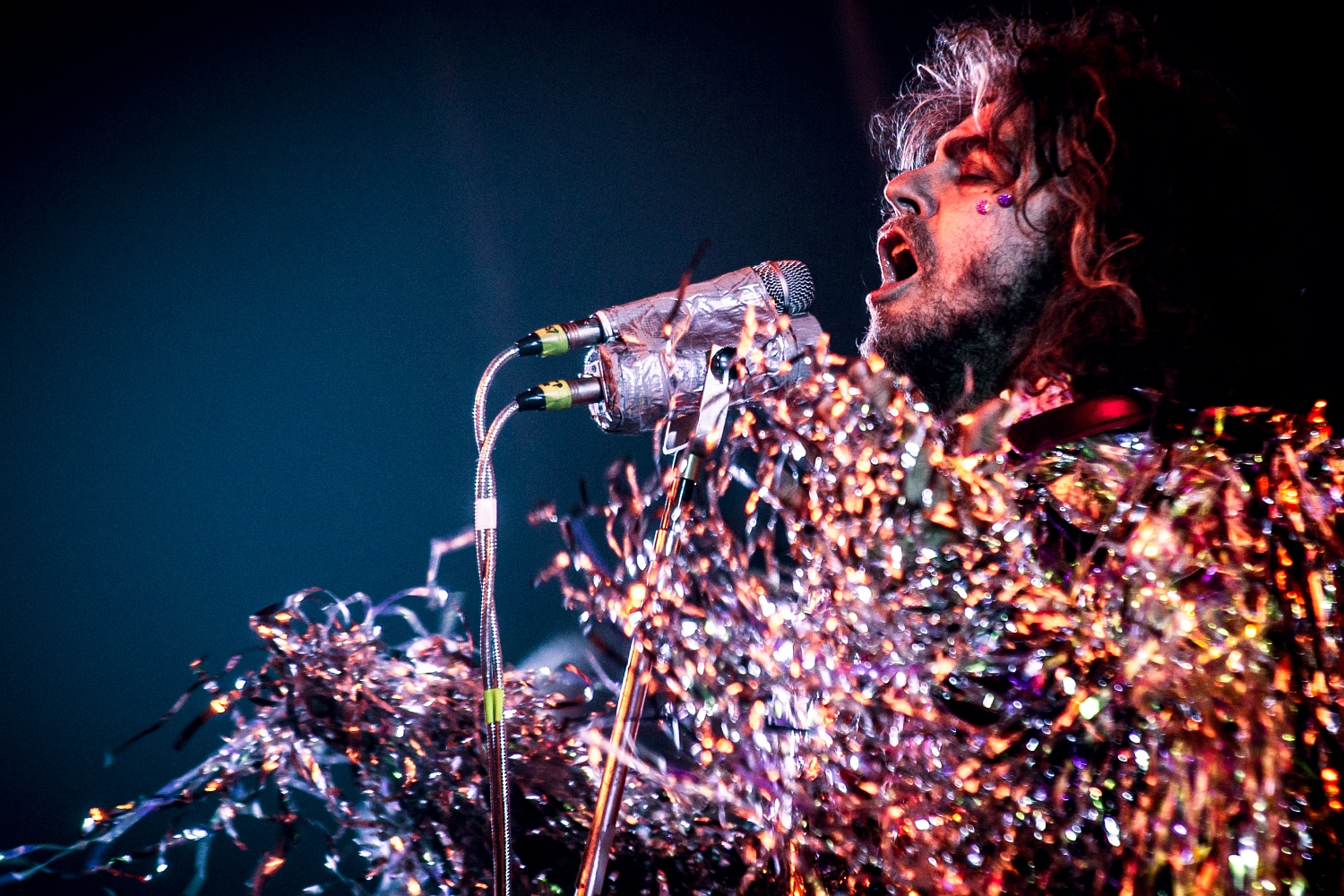 The Flaming Lips 47