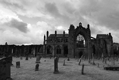 Melrose Abbey #stcuthbertsway #oums #leshainesimages #dailyshoot