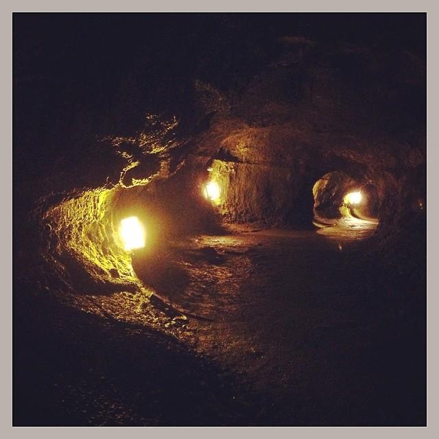 Hiking the Thurston Lava Tube.