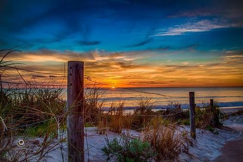 beach whitfords
