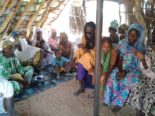 Participants in a focus group discussion of women farmers from Niassante supplying a dairy plant in Richard Toll, Senegal