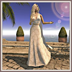 30L mesh dress with attached robe