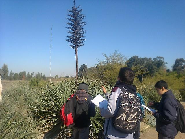 Actividad en Jardín Botánico de Universidad de Talca.