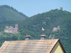Ein Storch und drei Burgen
