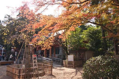 【写真】2012 紅葉 : 長岡天満宮/2020-10-09/IMGP6537