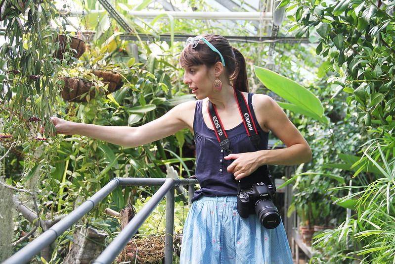 bröllop- och dopfotografering i Botan, hästklappning och filmmys i lilla alstad.