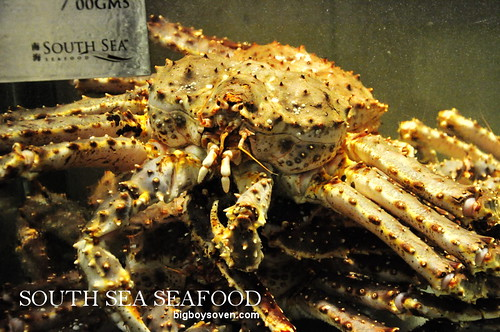 south sea seafood 14