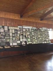 100 years of School in Kamas!