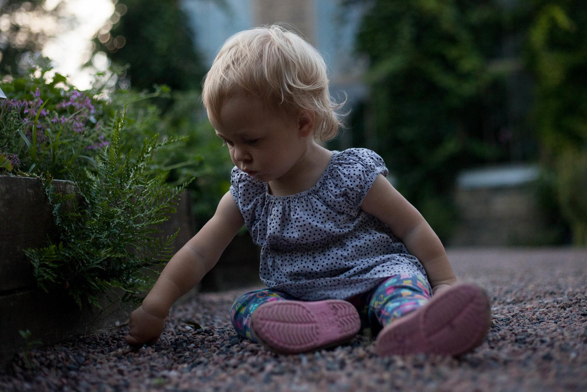 Botanical garden, Lund.
