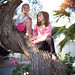 Kids in Tree (2)